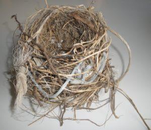 nido-moderno